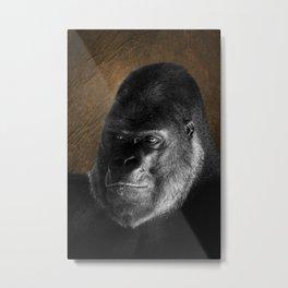 Oumbi The Silverback Gorilla Metal Print