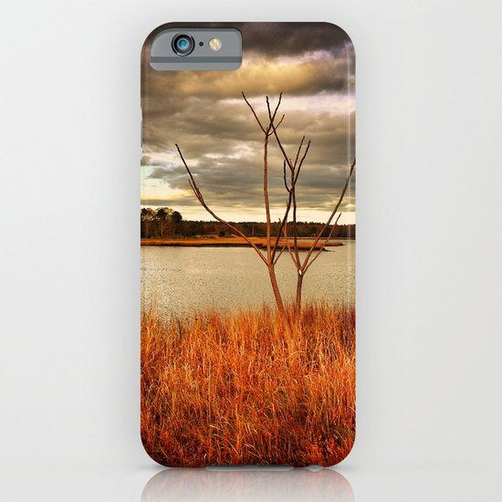 Fall Stalk iPhone & iPod Case