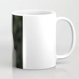 Dandelion Coffee Mug