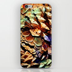 Painted Pine iPhone & iPod Skin