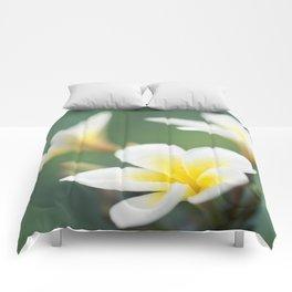 in the happy garden Comforters