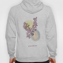 12 // Abstract 9 March 2017  | Abstract Shapes Art Colour Hoody