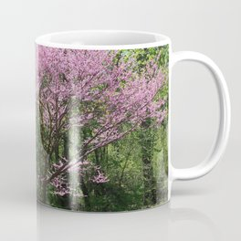 Redbud in Bloom Coffee Mug