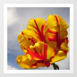 Yellow Tulip Galoire Art Print