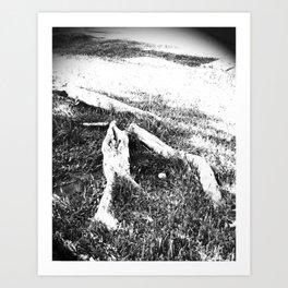 B&W II Art Print