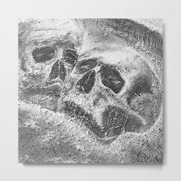 Soulmates are black and white Metal Print