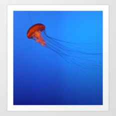 Orange Jellyfish Art Print