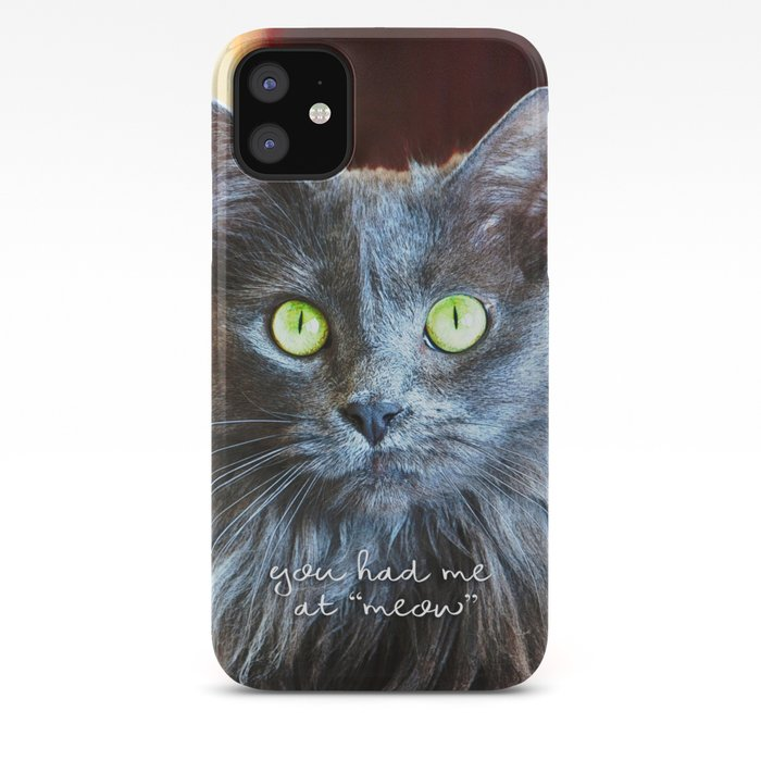 Fluffy Grey Cat Close Up You Had Me At Meow Iphone Case By Luceworks