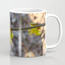 Rolling in Forsythia Coffee Mug