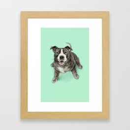 Hug a Staffie Framed Art Print