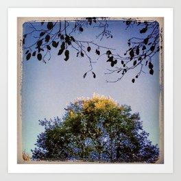 Tree Light Art Print