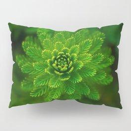 Green Flower | HD Design Pillow Sham
