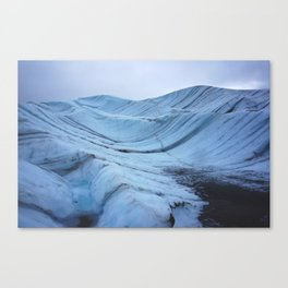The Freeze Canvas Print