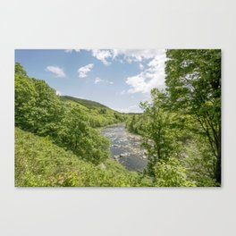 Shelburne Falls  Canvas Print