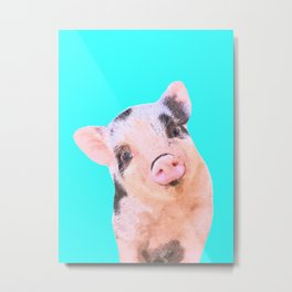 Baby Pig Turquoise Background Metal Print