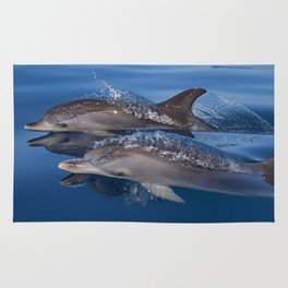 Dolphins Rug