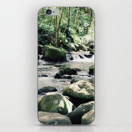 Hāʻena iPhone Skin