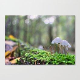 Macro World Canvas Print