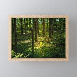 Finding the Light in the Darkness Framed Mini Art Print