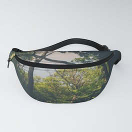 A frame within a frame Fanny Pack
