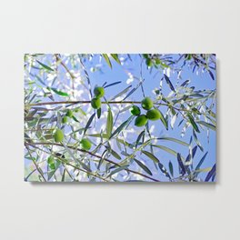 Olives in the sunshine Metal Print