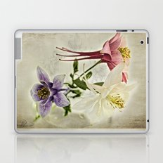 Summer Song  Laptop & iPad Skin