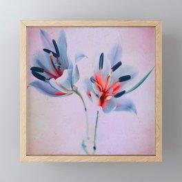 The flowers of my world Framed Mini Art Print