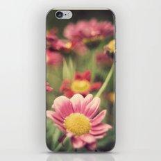 lorak iPhone & iPod Skin