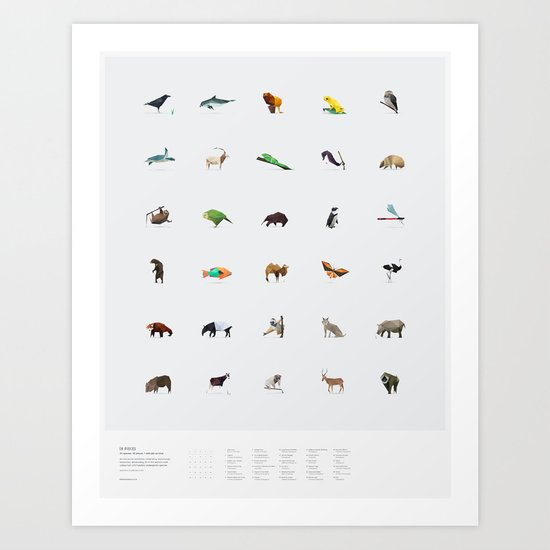 In Pieces – Species Collection Art Print
