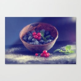 Dark blue berries contrasting with bright red berries Canvas Print