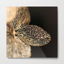 natural art Metal Print