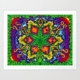 Herbal Cure Art Print
