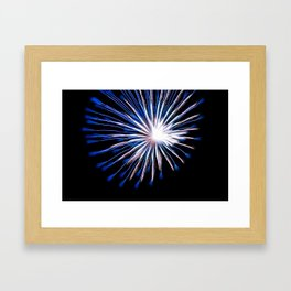 Firework Creations - Tulipfest 17 Framed Art Print