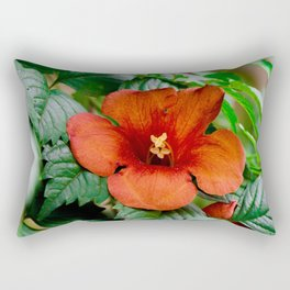 (There is) Something about nature lol Rectangular Pillow