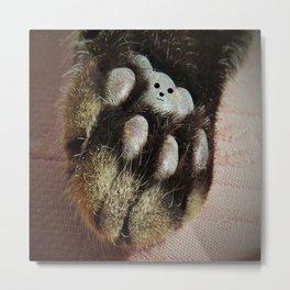The Teddy Cat Metal Print