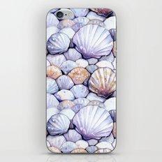 Sea Shells Amethyst iPhone & iPod Skin