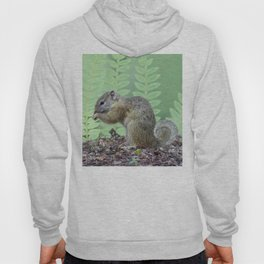 A squirrels feast Hoody