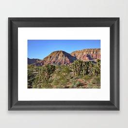 Cedar Pocket, Virgin River Gorge, AZ Framed Art Print