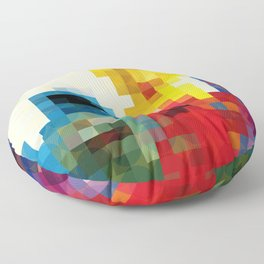 Sesame Floor Pillow