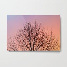 Peaceful Sunrise Metal Print