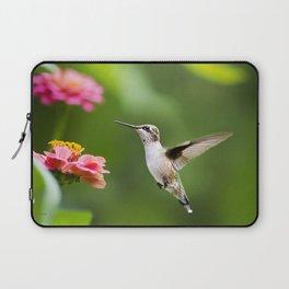 Hummingbird XI Laptop Sleeve