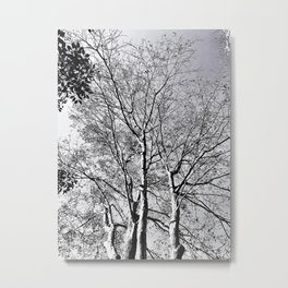 The Trees - As Old as Time Metal Print