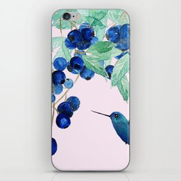 blueberry and humming bird iPhone Skin