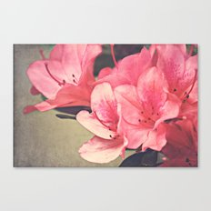 Strawberry Flowers Canvas Print