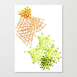 abeja vs libelula Canvas Print