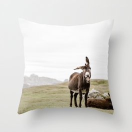 Cute smiling donkey in Seceda, near Ortisei  | Dolomites Italy travel photography Art Print Throw Pillow