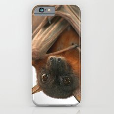 Little Red Flying Fox Hanging Out Slim Case iPhone 6s