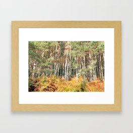 I have a room all to myself; it is nature Framed Art Print