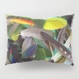 Manifest Feathers Pillow Sham