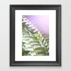 Fern + Photons Framed Art Print